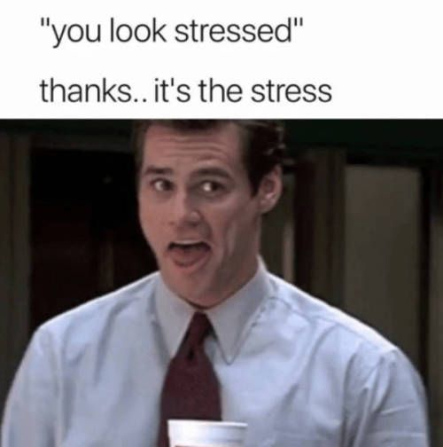 33 Pics And Memes To Spice Up Your Day Stress Humor Girlfriend Humor Stressed Out Memes