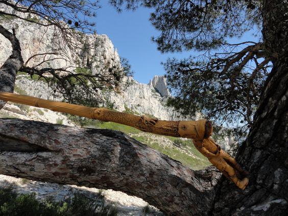 Bâton de Randonnée monoxyle  en Buis, la Racine formant le Pommeau.  Sculpture de Pierre Damiean. Voir le Site: www.pierdam.fr  (ici dans les Calanques)...