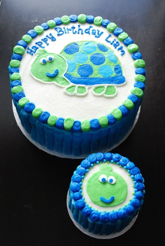 Turtle Cake with Mini Smash Cake - by Razzberry Cakes
