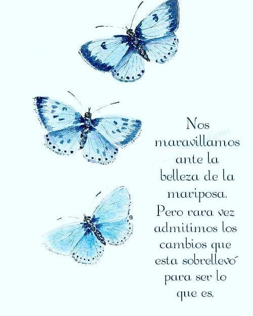 redespiritual #espiritualidad #alma #amor #fe #paz #conciencia ...