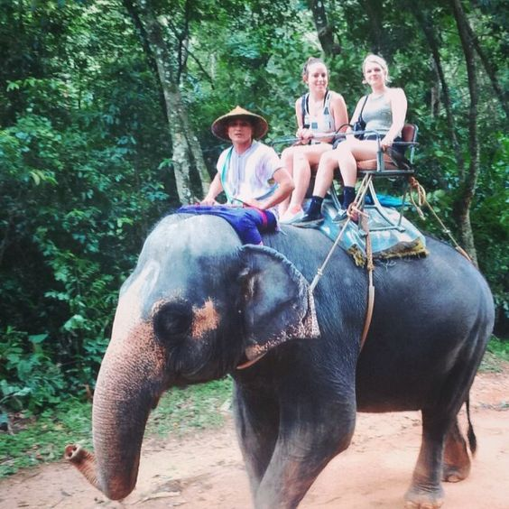 Had an amazing day elephant trekking #thailand #elephant #siamsafari #phuket by demi.gabriel