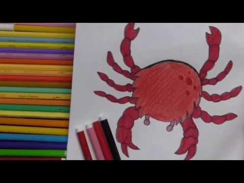 عالم البحار Youtube Drawings Moose Art Art