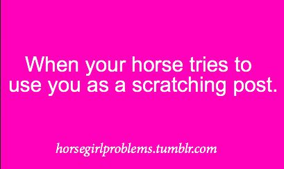 equestrian problems. I'm not a scratching post, so I don't let them treat me as such. Although it has happened occasionally.