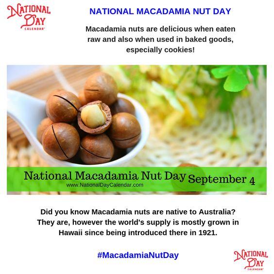 National Macadamia Nut Day September 4 National Day Calendar Macadamia Nuts Macadamia Delicious