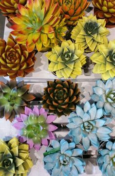 Image result for Succulent вышивка лентами