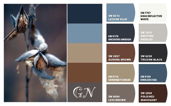 ColorSnap by Sherwin-Williams – ColorSnap by MLW