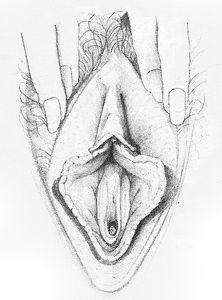 erotische massage best ww vagina