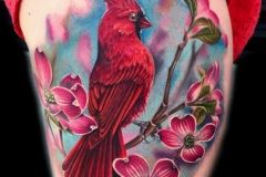 Beautiful Red Cardinal bird and dogwood flower tattoo by Liz Venom.   delicate, feminine, amazing, best, superb, pretty, girly, women, girl, thigh, colour, color, leaves, flowers, peonia, oil, painting, tattoos, tattooed, tattoo, ink, inked, crazy, realism, realistic, soft, bombshell, tattooer, artist, birds, meaning, represent, vivid, beauty.