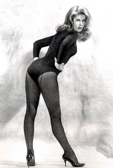Elizabeth montgomery pantyhose that
