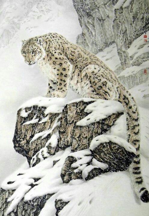 White Leopard....