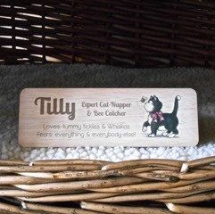 On International Cat Day, as well as our popular reversible cat fed signs, we can also do custom designs. Great when you have to label your cat's basket before going to the vets. Just send us a convo with as much detail as possible about what you want.