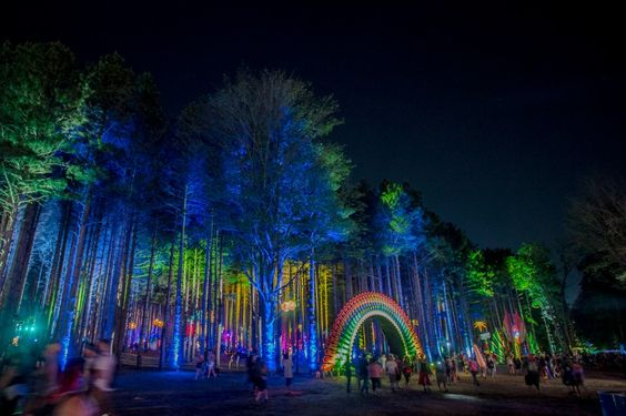 Gallery – The Art of Electric Forest   Electric Forest Festival