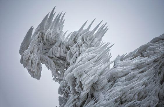 2014-12-09_mk03   http://www.designfaves.com/2014/12/stunning-freezing-fog-ice-formations-captured-on-film-in-slovenia
