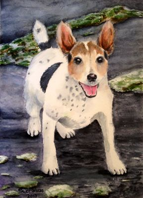 Watercolor Painting of Tumble by Suzy Waldo