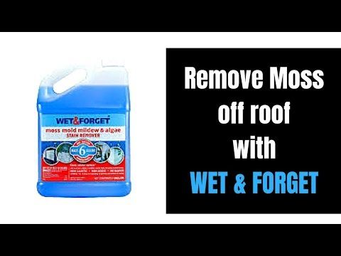 How To Remove Moss Mold From Your Roof Shingles With Wet Forget Roof Shingle Demo Video Youtube Roof Cleaning Cleaning Mold Roof Shingles