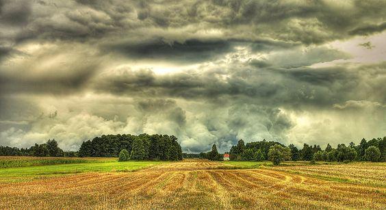 Polish field by HeretyczkaA.deviantart.com