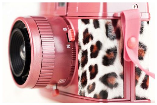 Pink Leopard Print Camera for something different and fun!