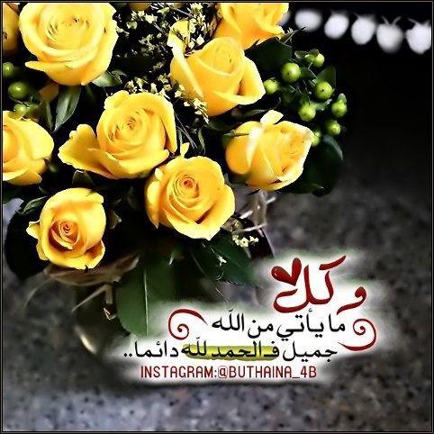 Pin By Salma On الصباح Plants Eid Mubarik Flowers