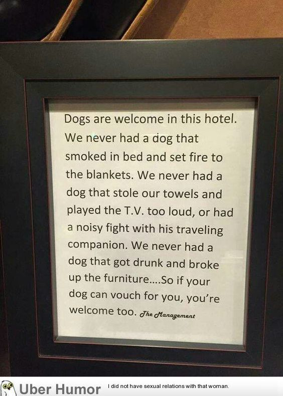 Even a hotels BFF!