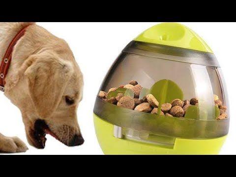 Interactive Dog Toys Treat Food Dispenser For Pawsfamilyltd With Sylvie Pet Food Dispenser Food Animals Dog Food Recipes