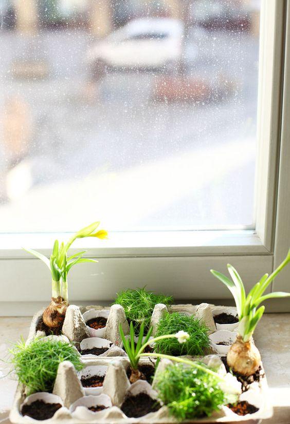 Yummy ♥ #diy #herbs #kräutergarten #kräuter #flowers #plants ...