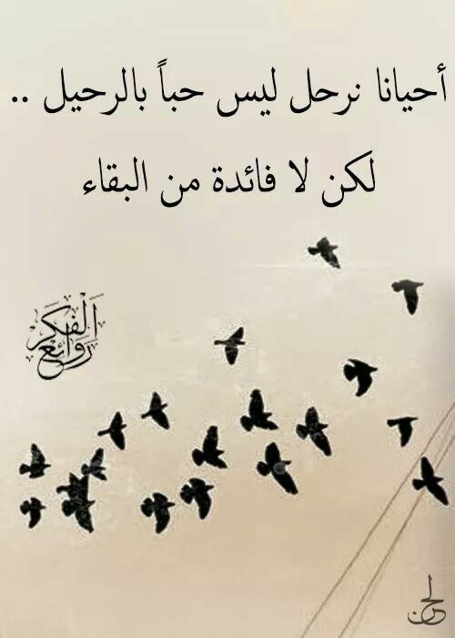 صور خيانه وخلفيات عن الخيانة مكتوب عليها كلمات بفبوف Quotes For Book Lovers Words Quotes Funny Arabic Quotes