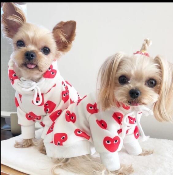 Cute Dog Designer Dog Clothes Cute Dog Clothes Girl Dog Clothes