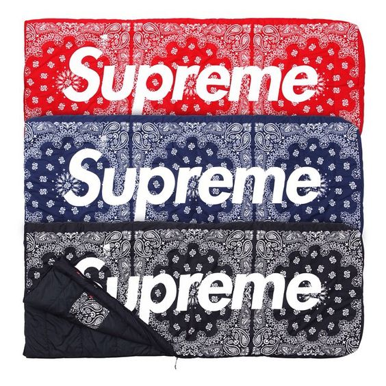 Supreme/The North Face® Dolomite Sleeping Bag