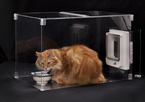 Enclosed Feeding Or Litter Box Gadget For Keeping Your Dog