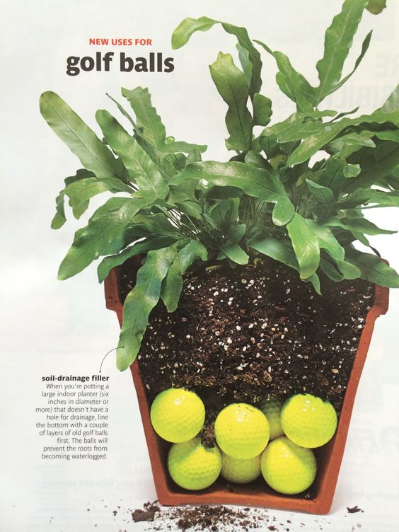 use golf balls for soil drainage in pots without holes diy home pinterest golf pots and. Black Bedroom Furniture Sets. Home Design Ideas