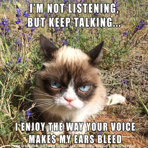 Keep talking Grumpy Cat