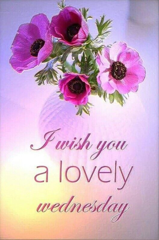 I wish you all a lovely day. Please visit my boards and pin freely*♥♥♥*