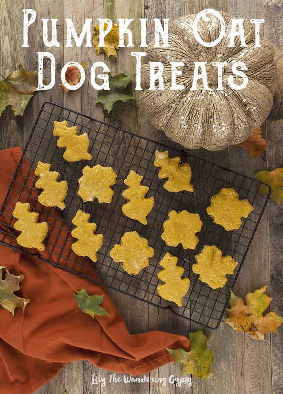 These treats were a real hit with my little Chocolate Lab!!: