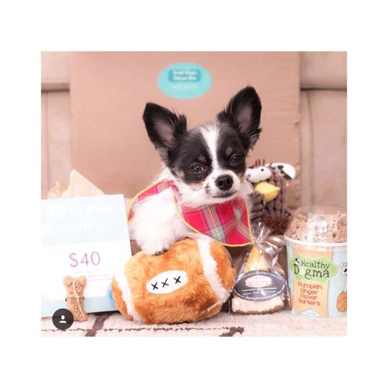 Snag they November PawPals Box now. Pawpalswithannie.com ...