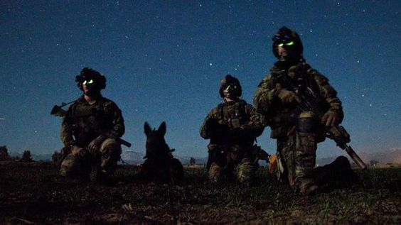 (1) DEBRA GIFFORD (@lovemyyorkie14) | Twitter  I can lie down & sleep knowing I will wake again because the Lord keeps Night Angels to protect me. (Psalm 3:5) #SOT