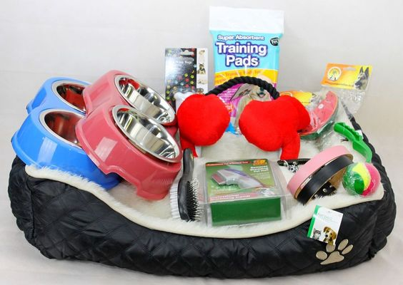 DOG / PUPPY STARTER KIT FOR MALE & FEMALE DOGS (BED, TOYS, LEAD, WASTE BAGS, COL in Pet Supplies, Dog Supplies, Beds | eBay