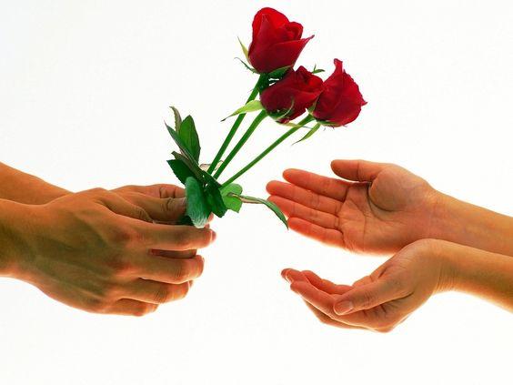 Fondo de pantalla: unas rosas para ti