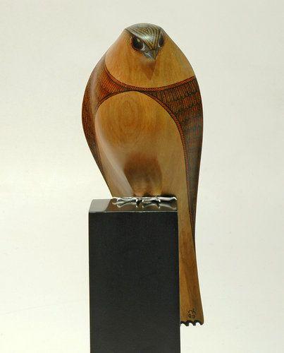 New Zealand Falcon  by Rex Homan: