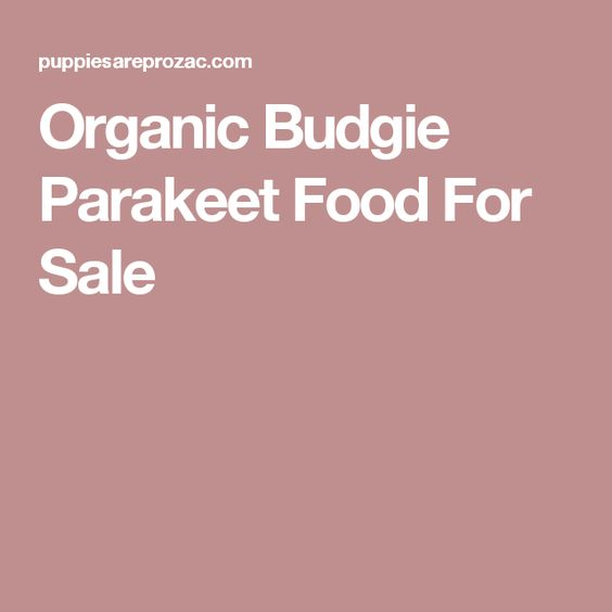 Organic Budgie Parakeet Food For Sale