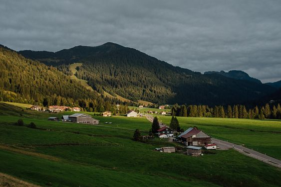 Unterwegs im Allgäu - Hotel Hubertus in Balderschwang - Viehscheid in…