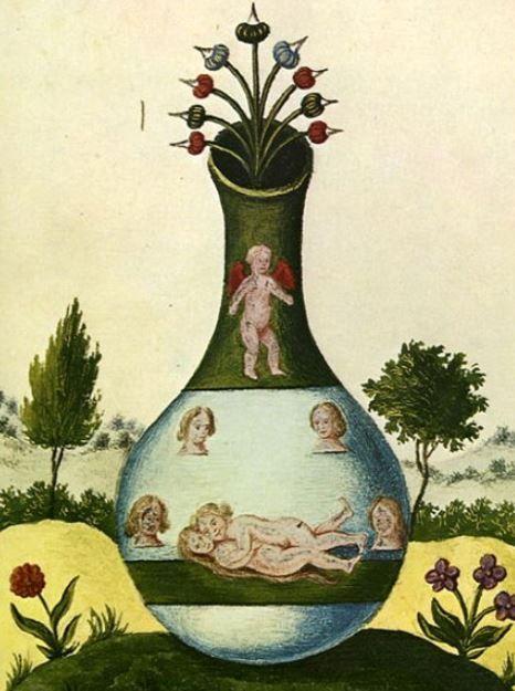 Elixir of life : 長生不老藥;萬靈丹