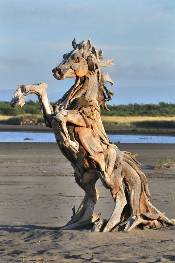 """Driftwood and horses!? I'm in love! <3 Seriously, how long was this person standing on the beach, making an installation that could possibly be destroyed? If I was the artists, I'd be afraid that kids would walk up to my baby and yell """"Giddy-up!"""" and jump on."""