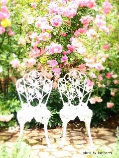 ローズガーデン 結婚式 - Google 検索