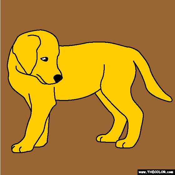 Golden+Retriever+Puppy+Coloring+Page