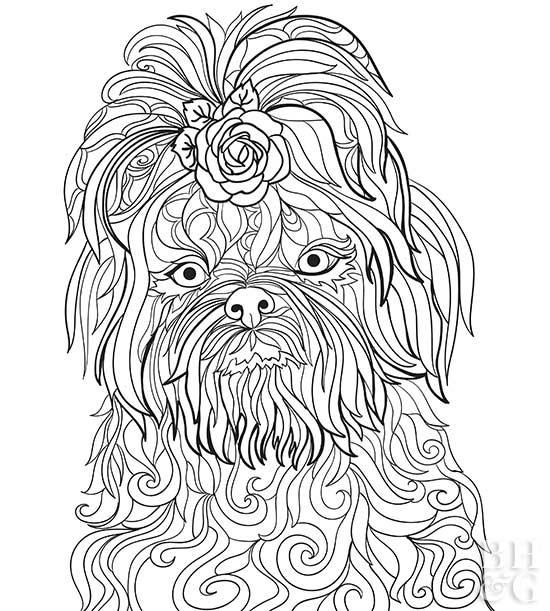 24 Free Pet Coloring Pages For Dog And Cat Owners Dog Coloring Page Animal Coloring Pages Puppy Coloring Pages