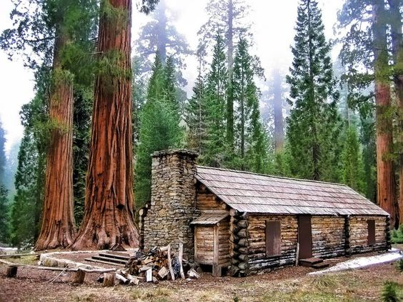 Cabin yosemite national park and logs on pinterest for Cabins in yosemite