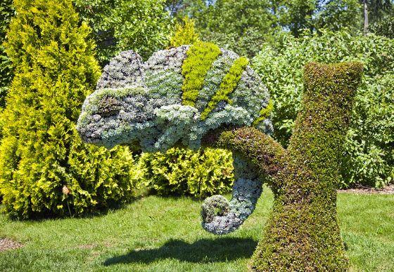 Ongelofelijk: deze sculpturen bestaan uit planten   Froot.nl
