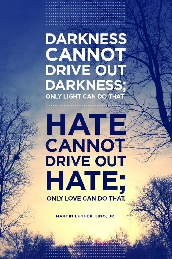 the true meaning of darkness cannot drive out darkness only light can do that Darkness cannot drive out darkness: only light can do that hate cannot drive   intelligence plus character--that is the goal of true education.