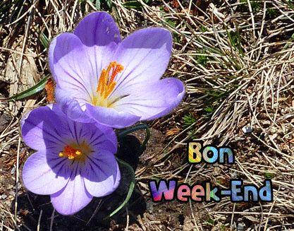 bon weekend crocus week-end