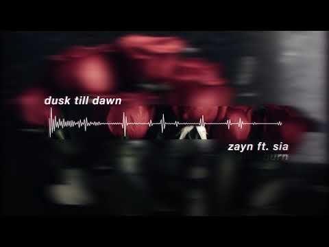 Zayn Dusk Till Dawn Ft Sia Slowed Youtube Dusk Till Dawn Dusk Dawn